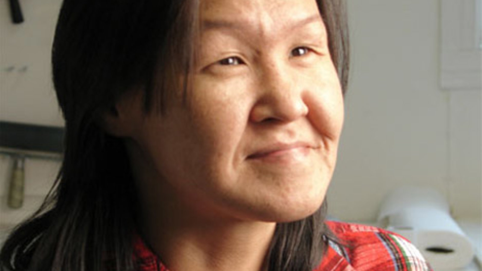 Annie Pootoogook - The Work of an Inuit Contemporary Artist